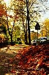 Autumn in Warsaw (14419964894).jpg