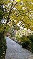 Autumn season in Butanic Garden فصل پاییز در باغ بوتانیکال تفلیس 07.jpg