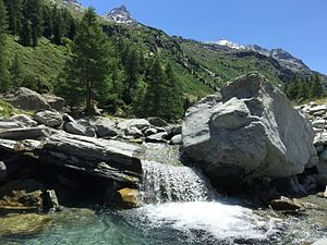Maurienne - The well preserved nature, thanks to the national park, attracts many tourists looking for real alpine wilderness, and a fauna still preserved.
