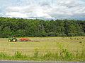 Baling hay in Vermont.jpg