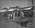 Banana transport at wharf ca1894 PortAntonio Jamaica.png