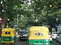 Bangalore street trees and traffic 4.jpg
