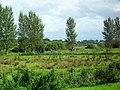 Bann Meadows, Portadown - geograph.org.uk - 1496363.jpg