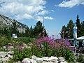 Bansko, Bulgaria - panoramio (47).jpg