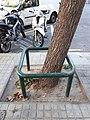 Barcelona tree trunk guard 2017 C.jpg