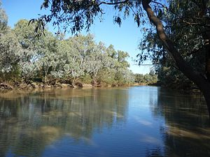 Central West Queensland - Barcoo River at Isisford, 2011