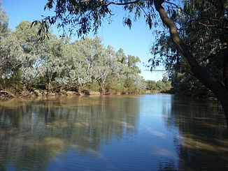 Barcoo River bei Isisford (2011)