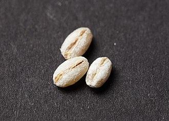 Pearl barley - Pearl barley
