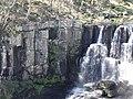 Basalt Columns at Ebor Falls in NSW in Australia.jpg