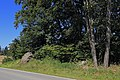 Baumgruppe mit Granitblöcken bei Groß Meinharts 02 NDM ZT-052.jpg