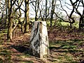 Beacon Hill Triangulation Pillar - geograph.org.uk - 404608.jpg