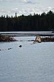 Beaver Dam - Algonquin Provincial Park, Ontario 01.jpg
