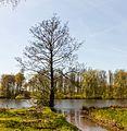 Beekdal Linde Bekhofplas. Een waardevol natuurterrein van Staatsbosbeheer In de provincie Friesland 05.jpg