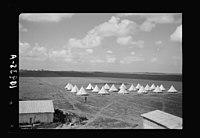 Beginning of a Jewish settlement at Qastina, Feb. 26, 1940 LOC matpc.19832.jpg