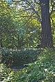 Belhus Icehouse - geograph.org.uk - 538603.jpg
