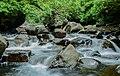 Belihuloya Waterfall, SriLanka.jpg