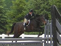Bella Beane ('97-'07) thoroughbred mare