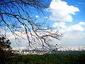 Belvedere do parque estadual da cantareira.jpg