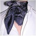 Benoit Pierre Emery silk scarf.jpg