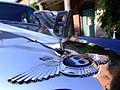 Bentley (2895197624).jpg