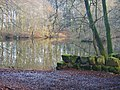 Bergpark Wilhelmshöhe, Asch - panoramio.jpg
