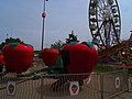Berry Go Round - panoramio (5).jpg
