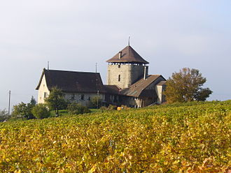 Lutry - Bertholod tower and surrounding vineyards