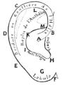 Bertillon - Identification anthropométrique (1893) 162 n&b.png