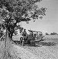 Bevloeiingswerken in Galilea Een man op een tractor met sproeiwagen bij een boo, Bestanddeelnr 255-4811.jpg