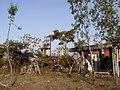 Bhopal Plant 14.JPG