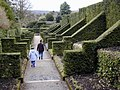 Biddulph Grange Garden - geograph.org.uk - 430264.jpg