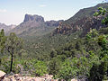 Big Bend National Park PB122689.jpg
