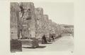 Bild från familjen von Hallwyls resa genom Egypten och Sudan, 5 november 1900 – 29 mars 1901 - Hallwylska museet - 91726.tif