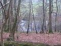 Black Pond from Rake Hanger - geograph.org.uk - 300687.jpg
