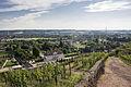 Blick auf Schloss Wackerbarth.jpg