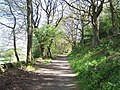 Boggard Lane, Oughtibridge, Sheffield - geograph.org.uk - 1281951.jpg