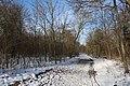Bois de Boulogne neige 7.jpg