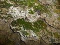 Bojnický zámok - jaskyňa.JPG