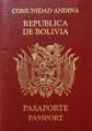 BolPassportFace02.png