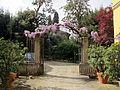 Borgo pinti 55, palazzina, giardino 04.JPG