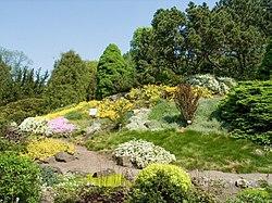 Botanical garden Krakow (2006-05-13) 04