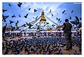 Boudhanath, home of peace and freedom.jpg