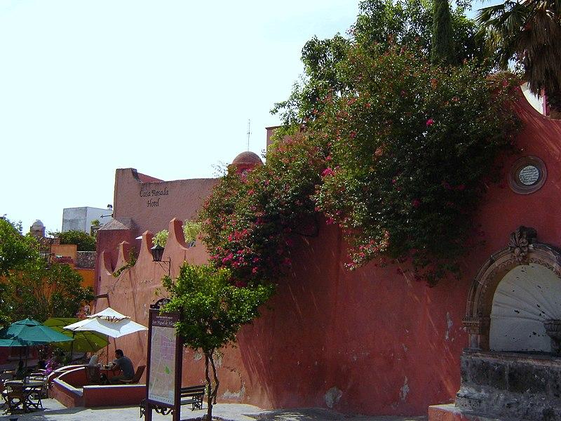 File:Bougainvillea San Miguel de Allende, GTO, Mexico - panoramio.jpg