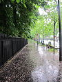 Boulevard Suchet pluie.jpg