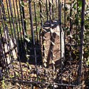 Boundary Stone (District of Columbia) NE 6.jpg