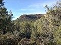 Boynton Canyon Trail, Sedona, Arizona - panoramio (19).jpg