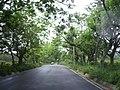 Brecha Huasteca 2 - panoramio.jpg
