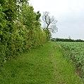Bridleway to Tomlow, Broadwell - geograph.org.uk - 1307470.jpg