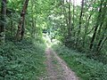 Bridleway to West Burton from Bury Hill - geograph.org.uk - 1407664.jpg