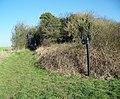 Bridleway towards Great Yews - geograph.org.uk - 686335.jpg